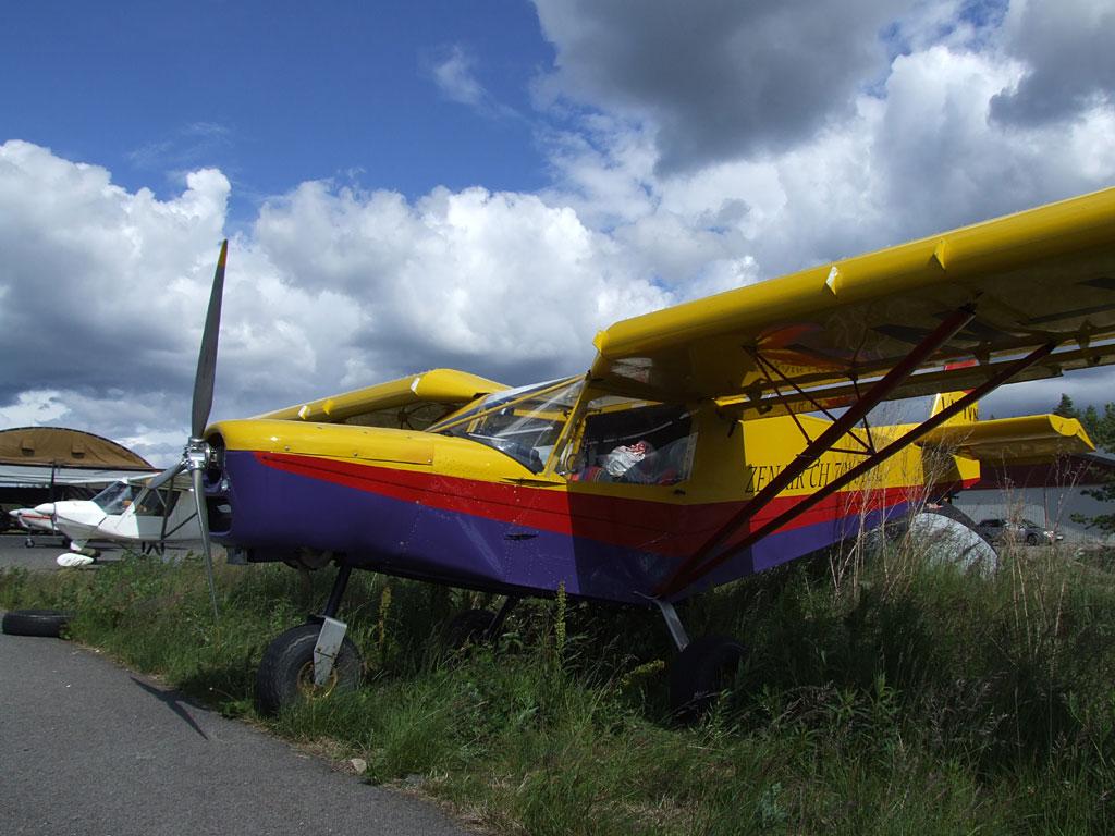 Norwegischer Buschflieger