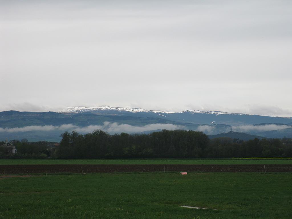 Nebelberg