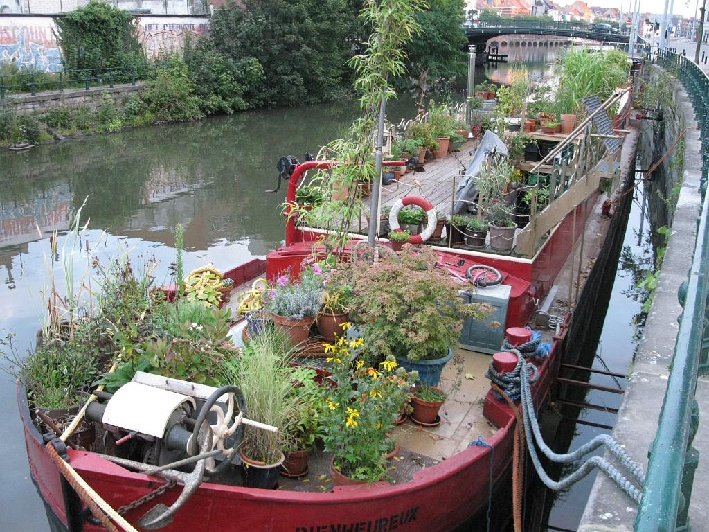 Hausboot mit üppigem Deckbewuchs