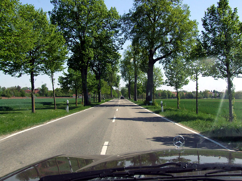 768_Allee_800