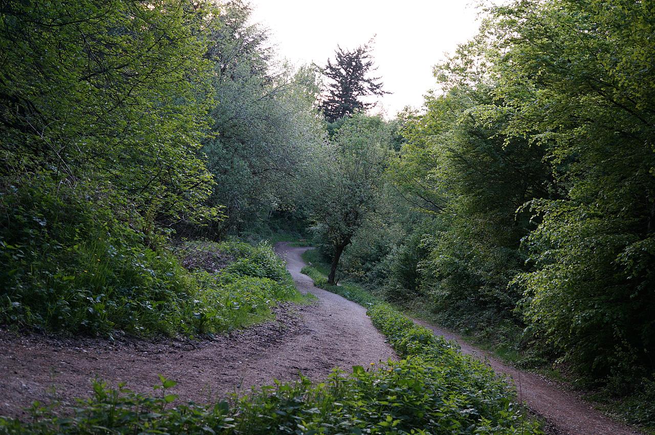 808-Strudelweg