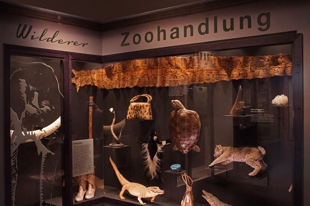520-Zoohandlung-Wilderer