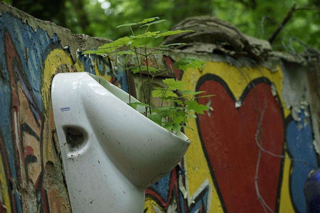 _DSC8165-Urinal